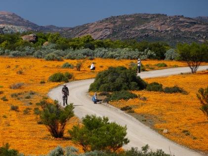 Noroeste de Sudafrica- Namaqualand
