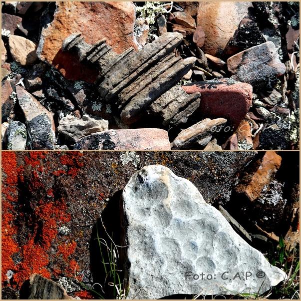Rocas esculpidas por el hielo y coloreadas con líquenes, ártico...